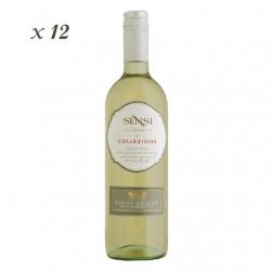 Pinot Grigio IGT - Sensi (12 bottles box)