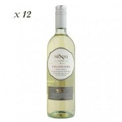 Vermentino IGT - Sensi (12 bottles box)