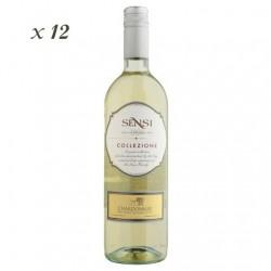 Chardonnay IGT - Sensi (12 bottles box)